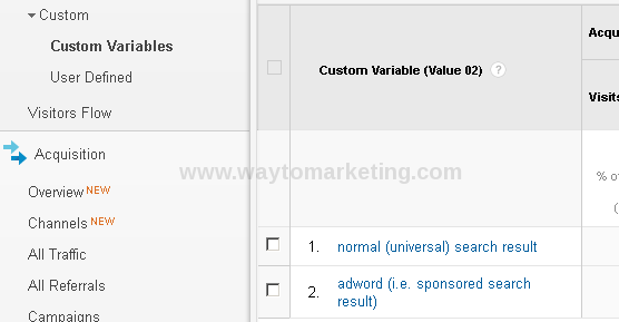 custom_variable.png